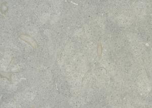 limestone_seagrass